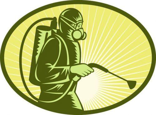 أسرع رش مبيدات ابوظبي