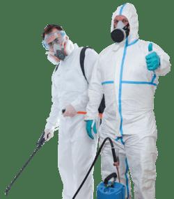 شركة مكافحة الحشرات أبو ظبى
