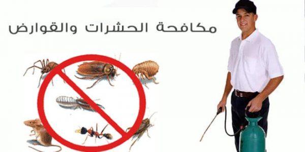 شركات رش حشرات بابوظبي