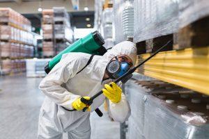 شركات مكافحة الحشرات في الشارقة