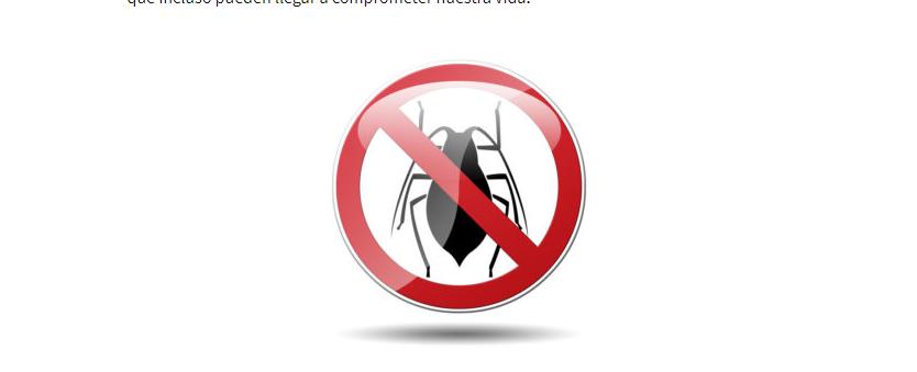 مكافحة حشرات ابوظبي
