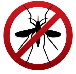 شركات مكافحه الحشرات