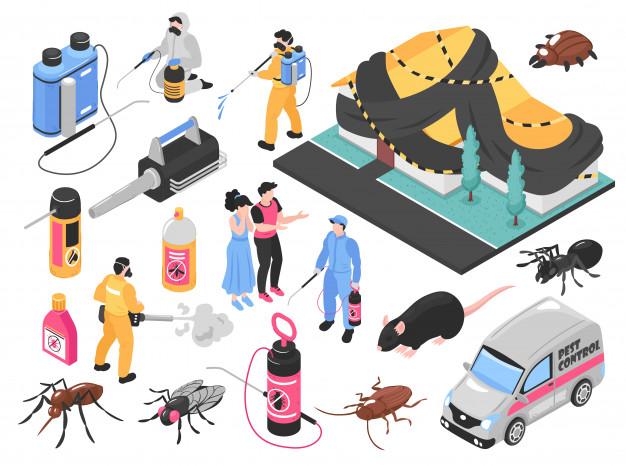 حكومة ابوظبي مكافحة الحشرات