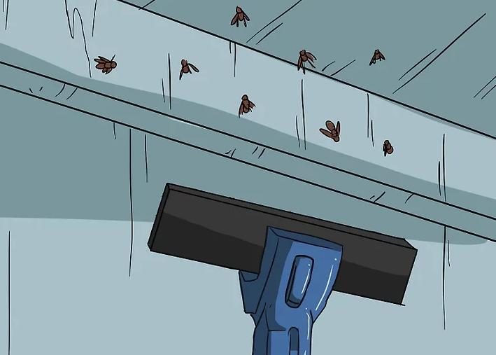 أفضل شركة رش مكافحة الحشرات